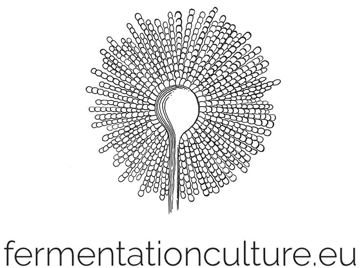 fermentationculture.eu